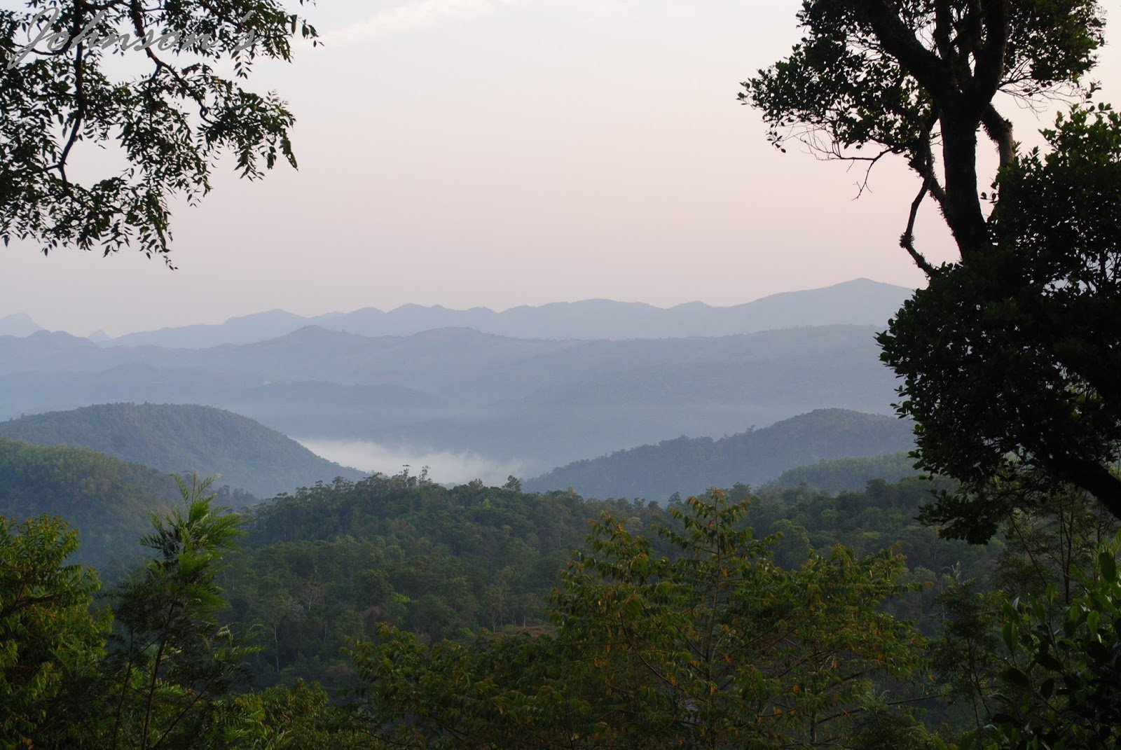 16 Reasons Why Coorg Should Be Your Next Travel Destination