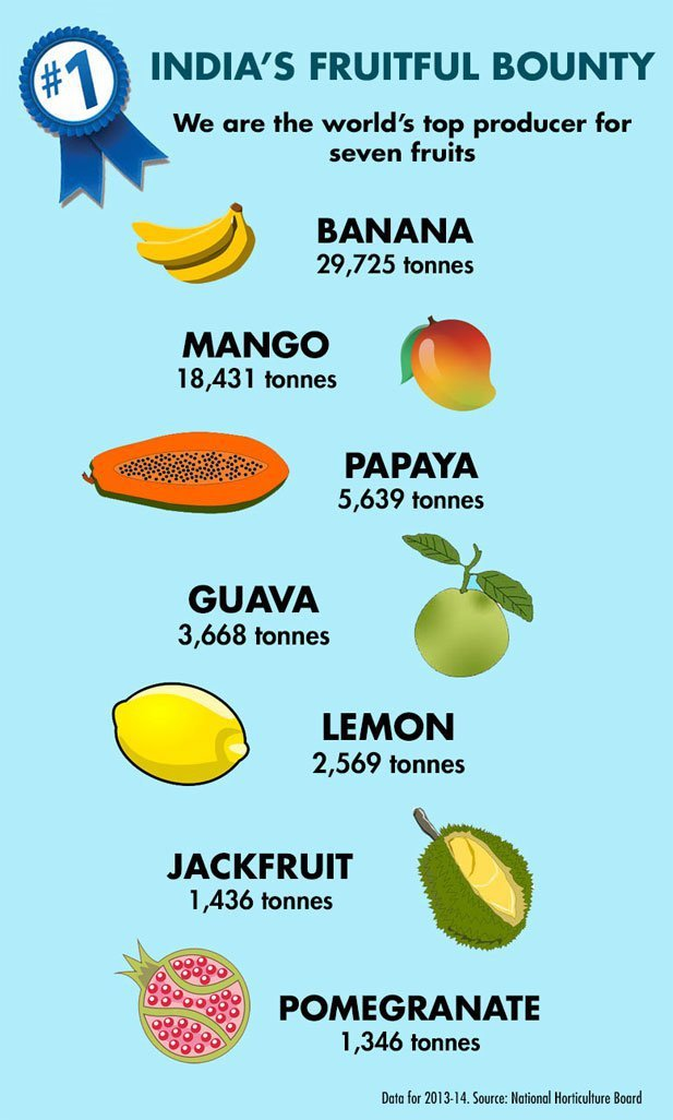 India Is The Second Largest Fruit Producer In The World