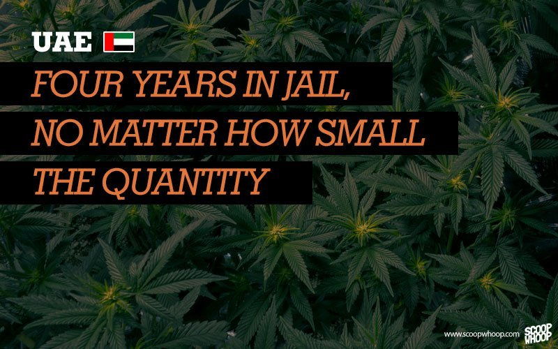 uae busted with weed