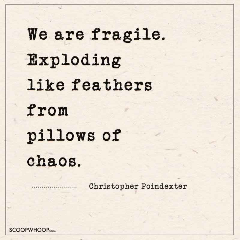 23 Christopher Poindexter Quotes That Explain How Life Is A ...