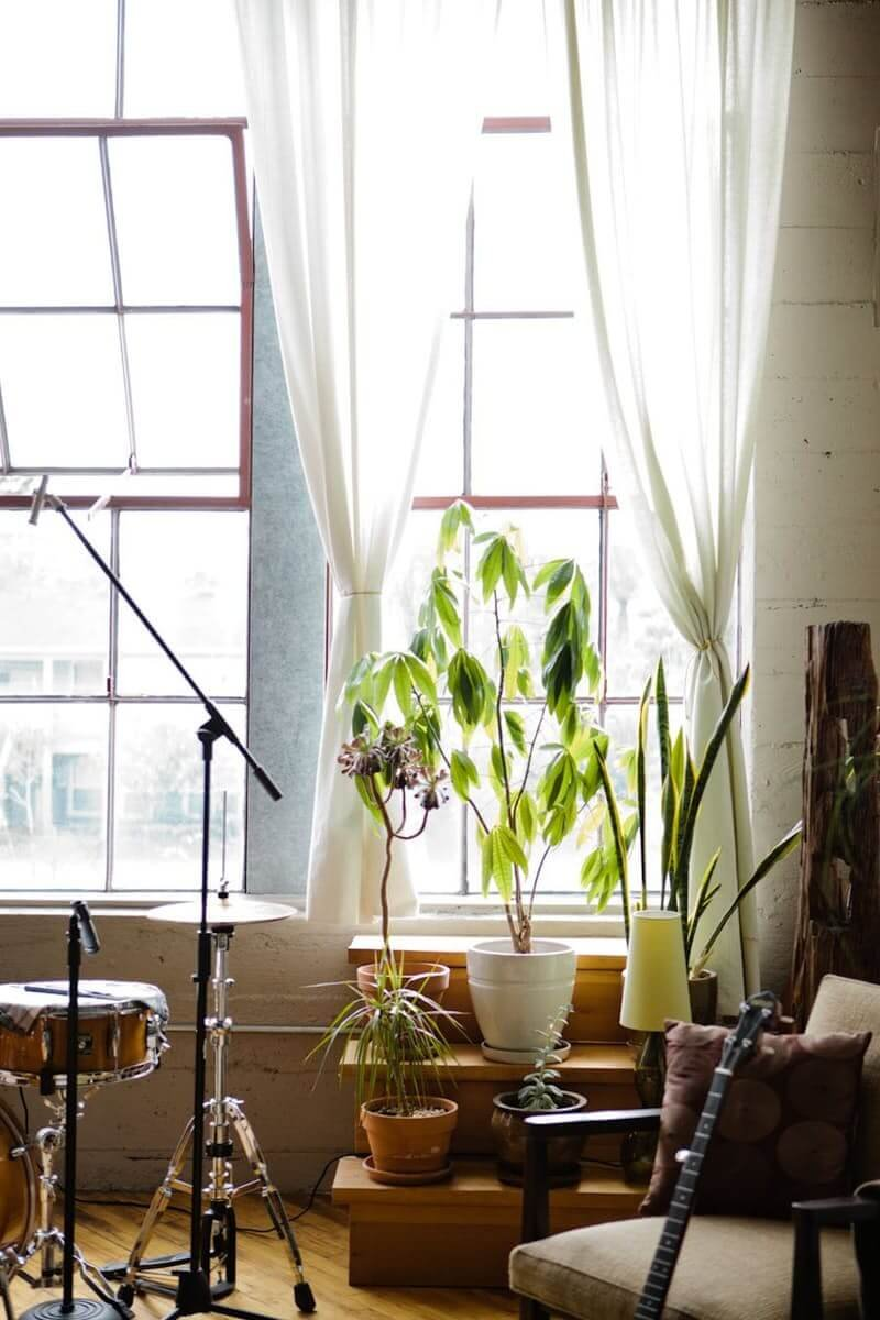 50 Ways to Decorate with Plants Even If You Have a Small ...