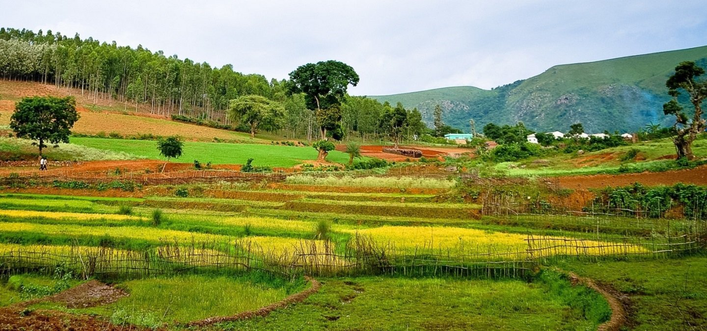 Araku Valley, One Of India's Most Scenic Yet Underrated Hill Stations Is The Perfect Summer Getaway