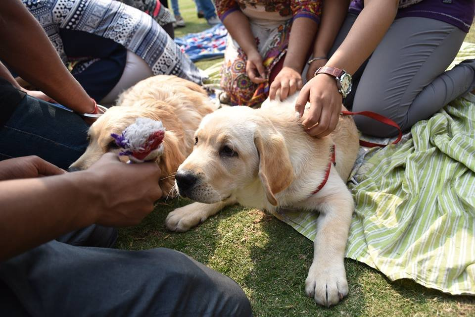 This Gurgaon Based Startup Brings Dogs To Your Doorstep To Help You