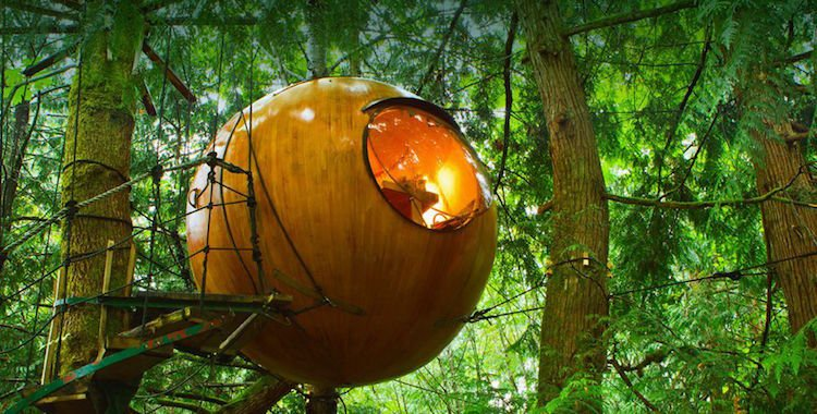 This Hanging Hotel In Canada Lets You Spend A Night In The Forest, But Wait Till You See The Luxury Inside