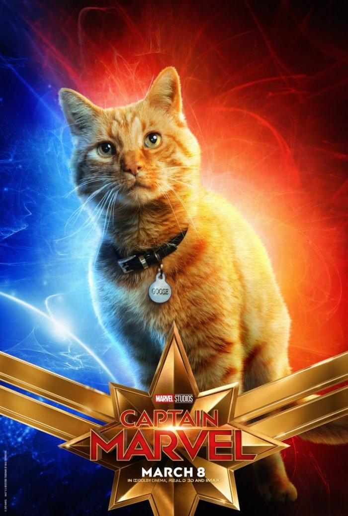 Meet Captain Marvel\u0027s Cat \u0027Goose\u0027, The MCU\u0027s Only Animal