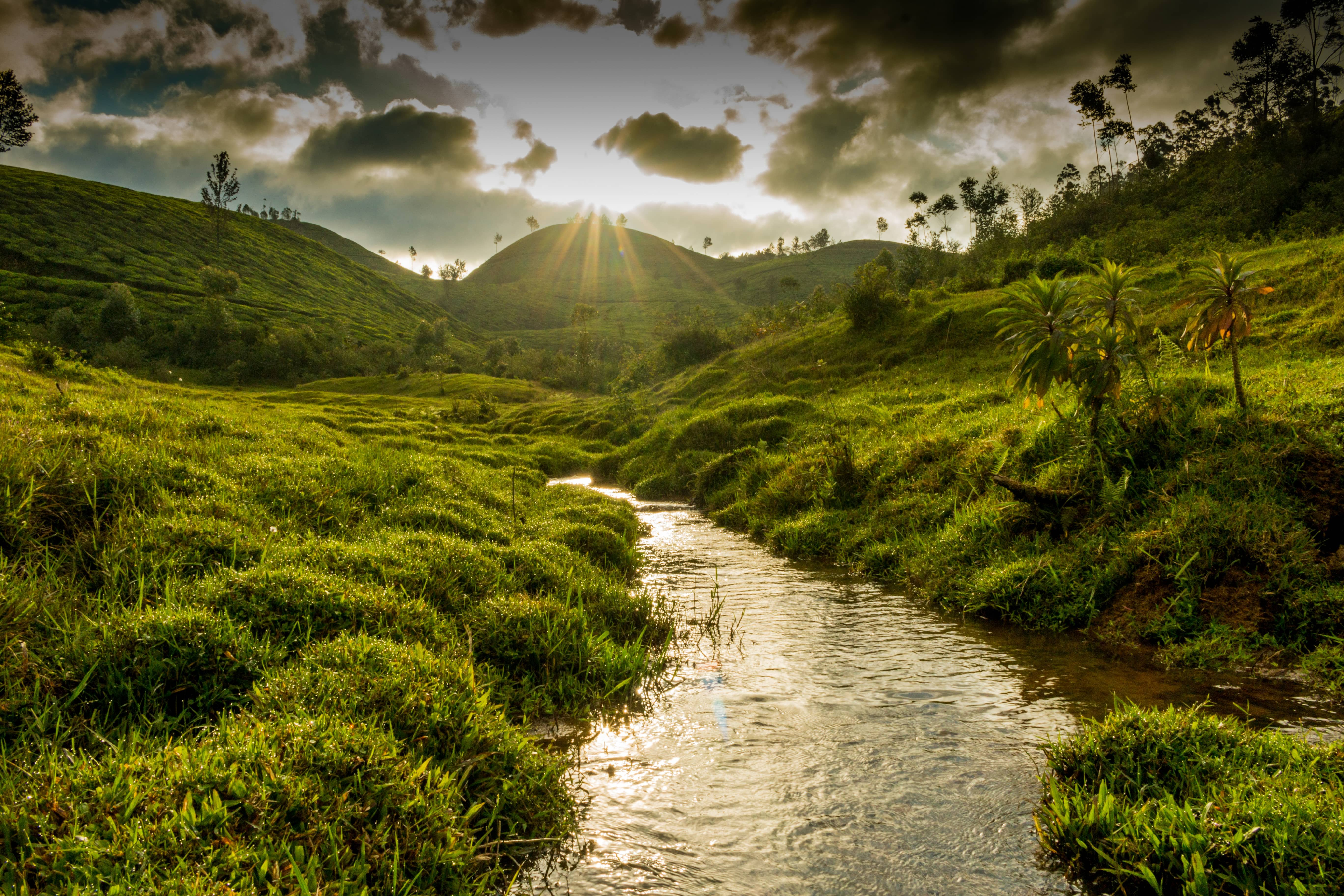 If You're A Landscape Photographer Then Here's Why The Serene Town Of Munnar Should Be Your Next Muse