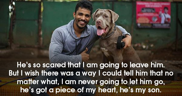 In Sickness & In Health: This Post About The Love Between A Dog & His Hooman Is The Purest Thing