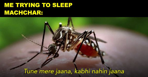 Dear Machchar, Tujhe Kaatna Hai Toh Kaat But Please Stop Buzzing In My Ears