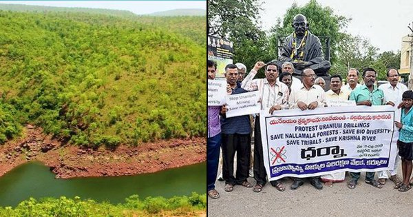Telangana People Protest Against Uranium Mining Proposal That Could Destroy Nallamala Forest